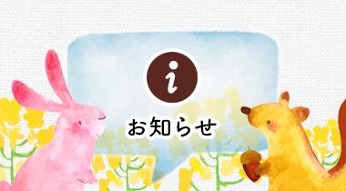 image_information1